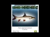 «Трофейная рыбалка» под музыку Любе - Камбат. Picrolla